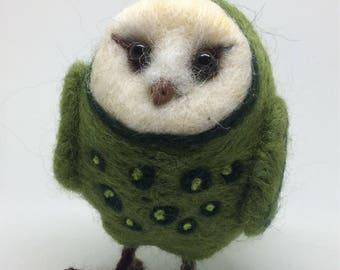 Mossy Little Owl
