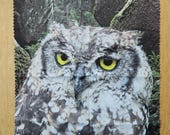 Microfibre cleaning cloth, lens cleaning cloth, glasses cleaning cloth, e-cloth, photo-print art, eagle owl