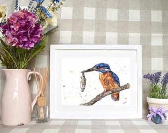 Limited edition ' Kingfisher' print