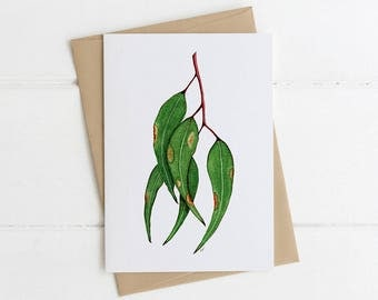 Greeting Card, Illustrated, Australian, Floral, PAINTED GUM LEAVES