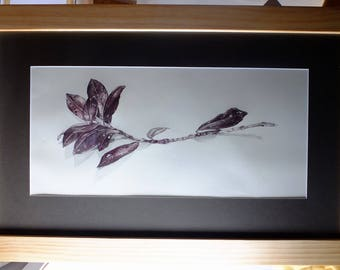 Pen and pencil drawing/ illustration, original framed artwork -  Pohutukawa study 2