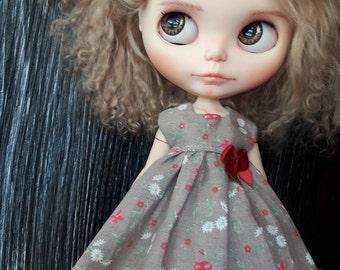 Dress for Blythe. Eden .shabby garden. Doll Dress.