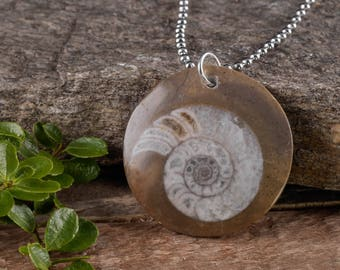 AMMONITE Fossil Pendant with Steel Necklace & Sterling Silver Bale - Ammonite Jewelry, Ammonite Pendant, Ammonite Slice Fossil Pendant E0522