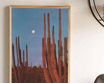 Vintage Arizona Desert Night Time Photograph Poster - Arizona Saguaro Cactus Photo Wallart - Full Moon Blue Nigthtime Sky Wall Art Print