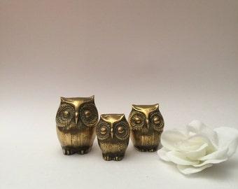Brass Owl Family