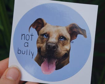 Not A Bully - American Pit Bull Terrier Sticker