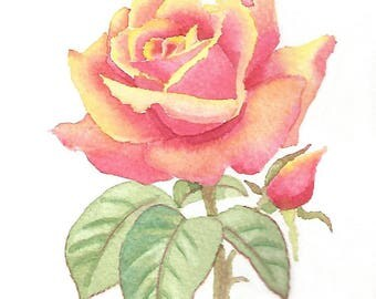 Rose Watercolour Painting