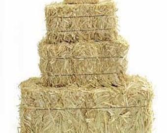 Mini Hay Bales - 2.5 inch (2 per bag)