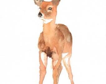 Deer baby art print , nursery woodland animal , watercolor deer , owl painting , forest animal art print , digital print download
