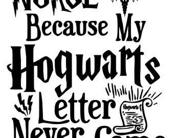 Nurse Because My Hogwarts Letter Never Came
