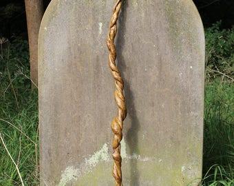 Spiral Walking Stick