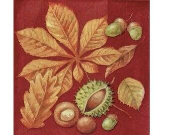 Set of 3 paper PLA007 chestnuts, Acorn, leaf napkins