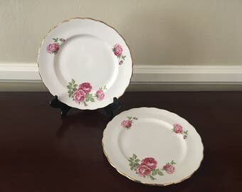 Vintage Bone China Plates with pink roses (set of 2)