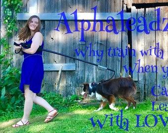 Alphaleadz  Dog Leash Training System