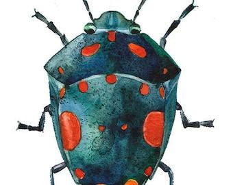 Green beetle digital download