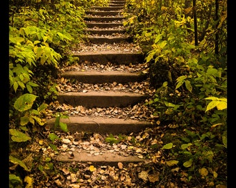 Enger Tower Trails