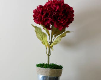Red Flower Metal Planter