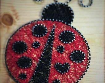 The Lovely Ladybug