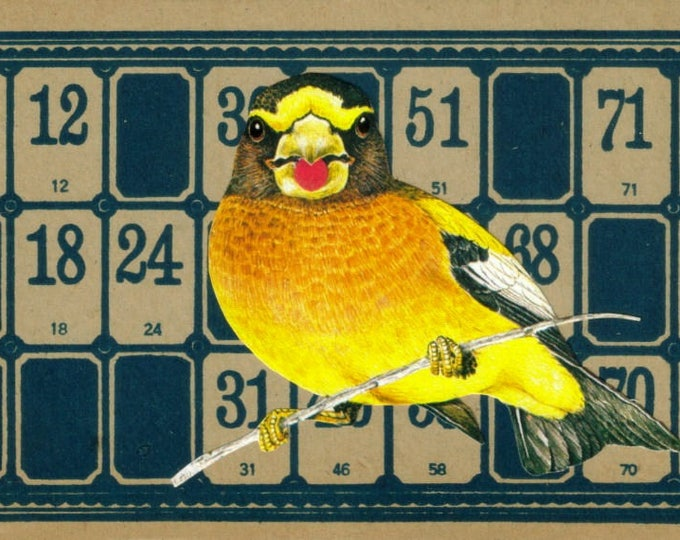 Game Room Art, Number Wall Art Collage, Gift for Bird Watcher Gift, Lotto Game Artwork, Game Room Decor