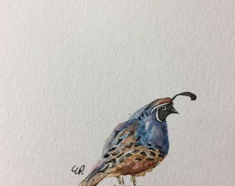 Lone Quail Watercolor Card / Hand Painted Watercolor Card