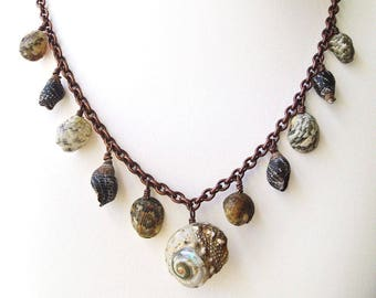 Shell Necklace, Shell Dangle Chain Jewelry, Rustic Shell Necklace, Boho Style Post Apocalypse Jewellery, Statement Necklace