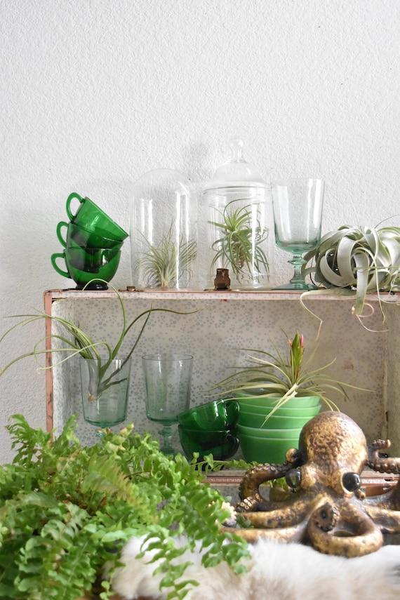 set green jade fire king milk glass bowls / small
