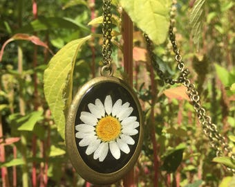 real Daisy necklace,statement necklace, vintage style, bohemian jewelry, antiqued bronze, real flower jewelry, botanical jewelry, gift ideas