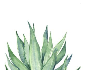 Original 8 x 10 inch watercolor painting of a cactus by Meredith O'Neal