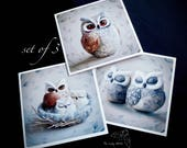 Set of 3 greeting cards by The Lady Moth - owl cards - needle felted owl - set of cards  - UK