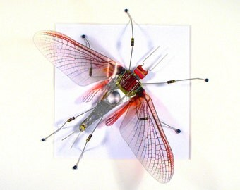 Framed Mayfly Art Framed Art Steampunk Sculpture Art Framed Insect Entomology Gift Recycled Circuit Board Mayfly Geek Gift Arthropod Gift