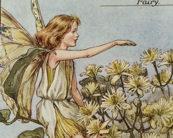 1940's Book Plate-Cicely Mary Barker-The Flower Fairies-Traveller's Joy-Fairyland-Matted-Nursery-Home-Wall decor