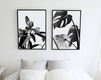Rubber plant + Monstera. Black and white leaves. Interior plants poster. Printable leaves. Nature printable posters. Instant download