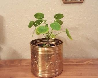 "Medium vintage 6.5"" brass planter with raised grapevine detail.  Lightweight retro planter."