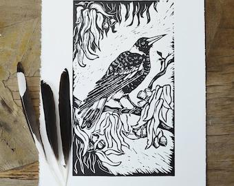 Australian Magpie~ Original linoprint~ Handprinted~ Maggie~ birds~ Australian Birds~ flora and fauna~ 30cm x 17cm ~ black and white