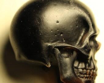 1/3 Resin Skull Cast (Coffee)