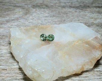 2 Green Garnet Gemstones / 4mm Round Tsavorite Garnets / Loose Green Garnets / Quality Gemstones / 2 Round Cut Tsavorite Gemstones / DD
