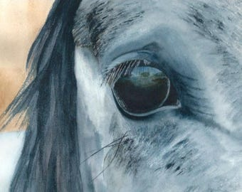 The eye of a horse. Blue watercolor