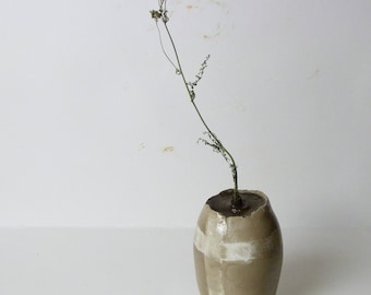 Ceramic vase for dry flowers