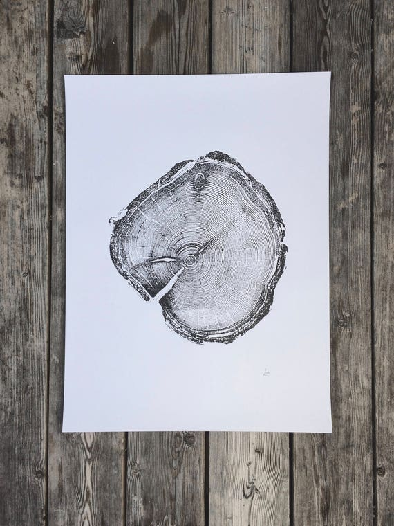 Old Growth Pine, Handmade print, 100 year old pine, Little Cottonwood Canyon, Real Tree Ring Print, fathers day idea, gift idea, dad gift