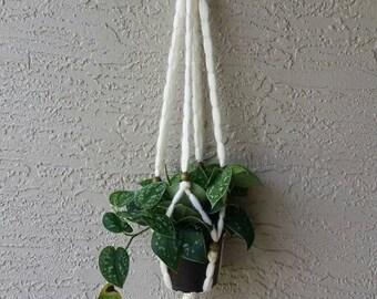 Macrame Hanging Silver Pothos Plant