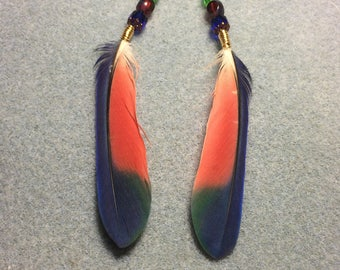 Blue, red and green Pionus parrot feathers adorned with blue, red and green Czech glass beads.
