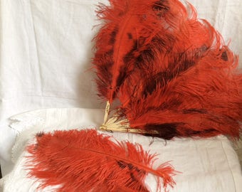 A Red and Black Ostrich Feather Fan