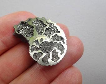 Pyritized Ammonite cabochon 29x21 mm