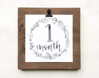 Gender Neutral Monthly Baby Milestone Cards + Wood Display Board, Newborn Photo Prop