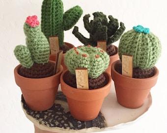 Crochet cactus, crochet succulent, made to order