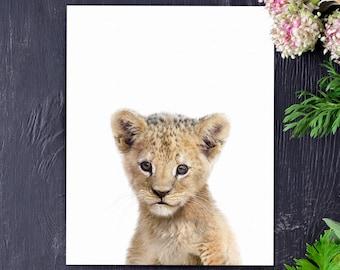 Lion print, Safari animal prints, PRINTABLE nursery art, Lion cub, Safari nursery decor, Baby lion, Safari animals, Nursery wall art
