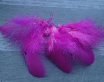 Set of 20 Fuchsia color hen feathers
