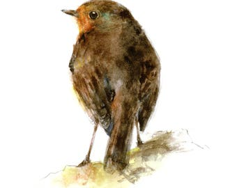 Robin watercolor painting - bird watercolor painting - 5x7 inch print - 0130