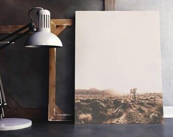 Desert Art | Desert Wall Decor, Cactus Poster, Cactus Wall Art, Nature Wall Art, Nature Poster, Immediate Download, Printable Poster