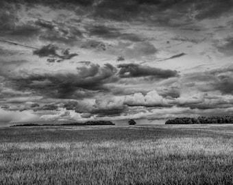 Landscape photography. Wall Art. Fine art photography. Suffolk landscape photography Dramatic black and white fine art landscape photography